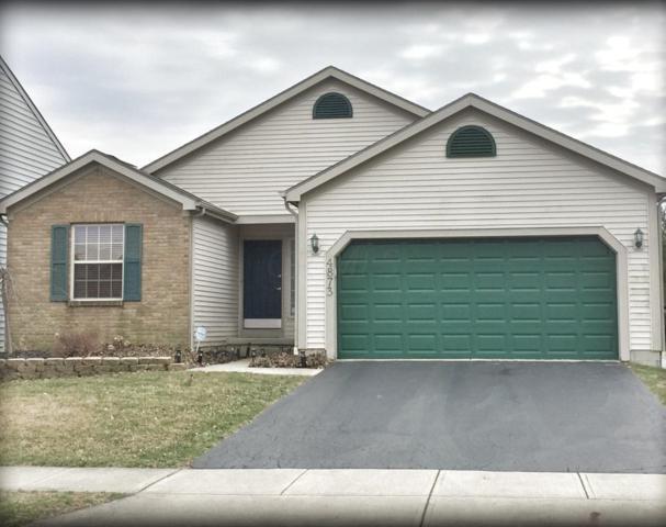 4873 Dori Park Drive, Hilliard, OH 43026 (MLS #219009338) :: Signature Real Estate
