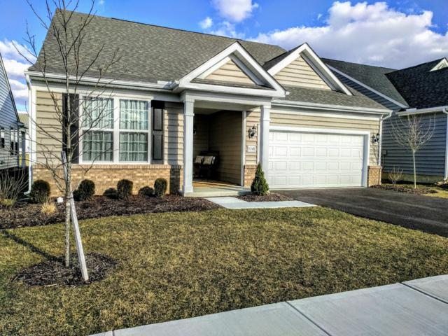 5348 Booker Drive, Westerville, OH 43081 (MLS #219009695) :: Huston Home Team