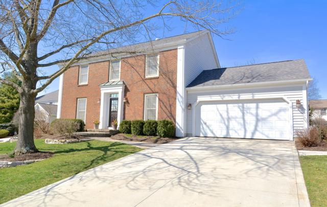 1088 Carousel Court, Westerville, OH 43081 (MLS #219010030) :: Signature Real Estate