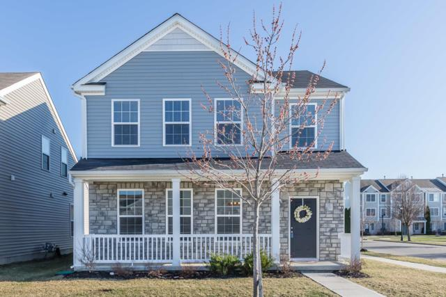 5871 Trail Creek Drive, Dublin, OH 43016 (MLS #219010084) :: Signature Real Estate