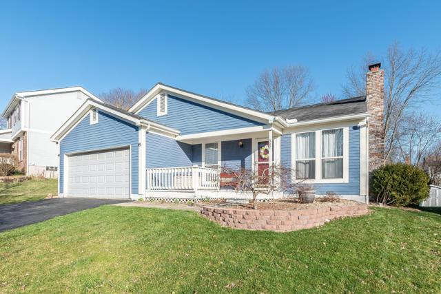 307 Sumption Drive, Columbus, OH 43230 (MLS #219010112) :: RE/MAX ONE