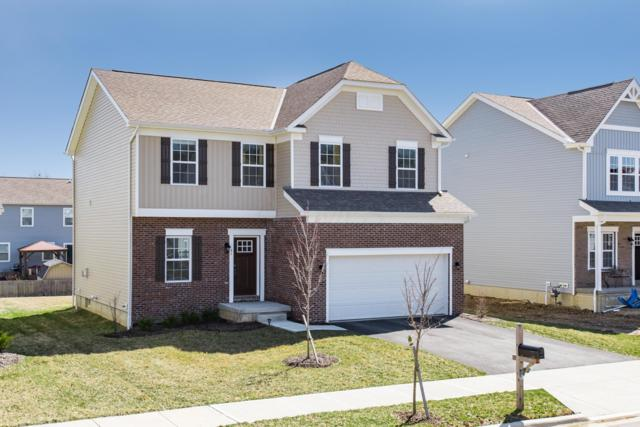 41 Carolyn Lane, Delaware, OH 43015 (MLS #219010139) :: RE/MAX ONE