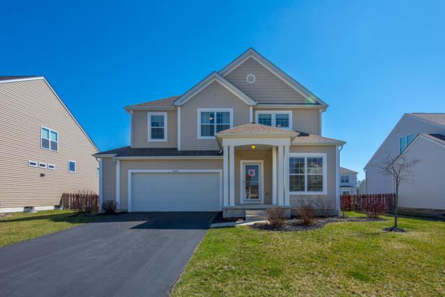 1444 Horizon Drive, Marysville, OH 43040 (MLS #219010144) :: Keller Williams Excel