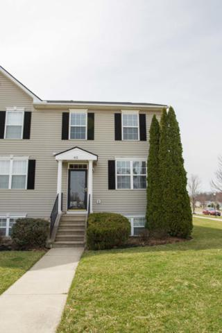 411 S Miller Drive, Sunbury, OH 43074 (MLS #219010151) :: ERA Real Solutions Realty