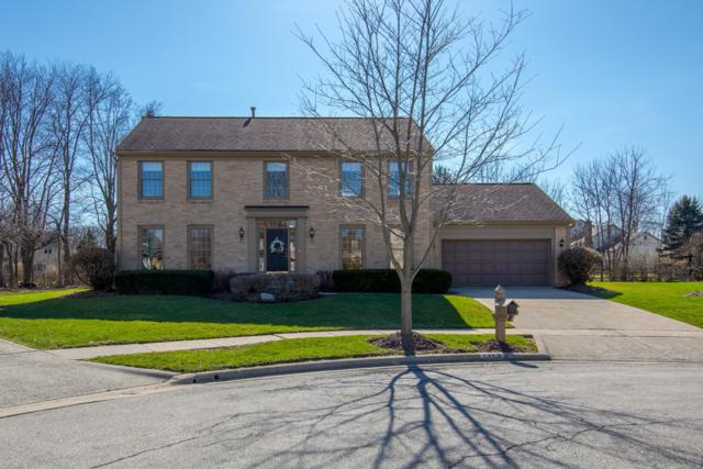 7175 Dominick Court, Dublin, OH 43017 (MLS #219010311) :: Berkshire Hathaway HomeServices Crager Tobin Real Estate
