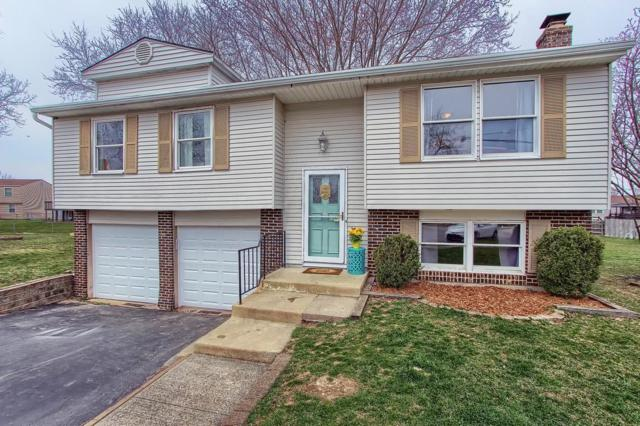659 Dovalon Place, Galloway, OH 43119 (MLS #219010433) :: RE/MAX ONE