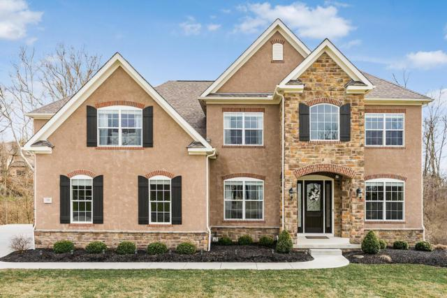 796 Elderberry Loop, Delaware, OH 43015 (MLS #219010656) :: Berkshire Hathaway HomeServices Crager Tobin Real Estate