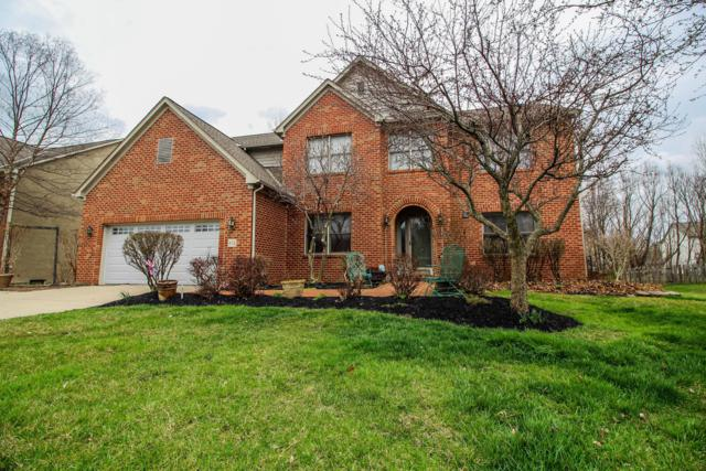 682 Bay Drive, Westerville, OH 43082 (MLS #219010796) :: RE/MAX ONE