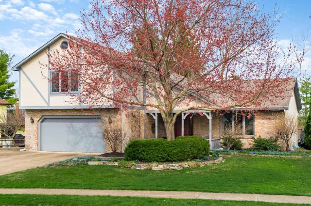 62 Keethler Drive S, Westerville, OH 43081 (MLS #219010901) :: Signature Real Estate