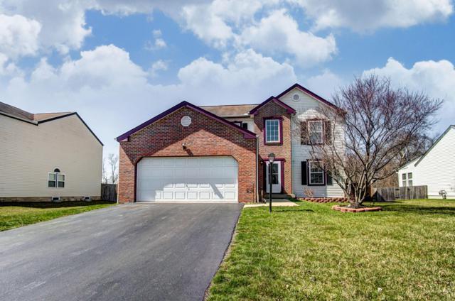 107 Rolling Meadow Court, Pickerington, OH 43147 (MLS #219010937) :: Signature Real Estate