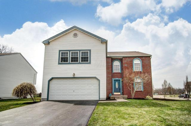 5539 Nutmeg Place, Groveport, OH 43125 (MLS #219011133) :: RE/MAX ONE