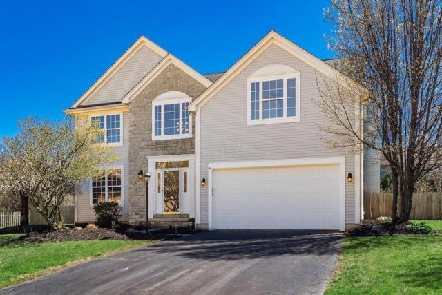 4710 Helmsbridge Court, Grove City, OH 43123 (MLS #219011140) :: RE/MAX ONE