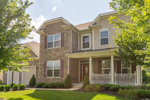 8480 Maple Leaf Court, Powell, OH 43065 (MLS #219011192) :: Signature Real Estate