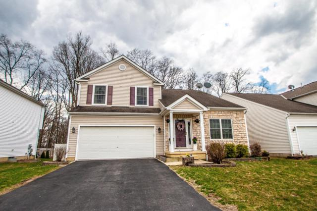 241 Kastlekove Drive, Lewis Center, OH 43035 (MLS #219011272) :: ERA Real Solutions Realty