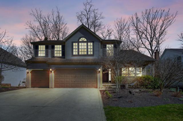 240 Kingsmeadow Lane, Blacklick, OH 43004 (MLS #219011292) :: Keller Williams Excel