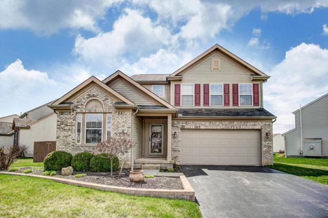 987 Military Drive, Galloway, OH 43119 (MLS #219011350) :: Keller Williams Excel
