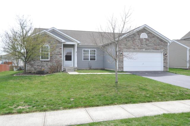 179 Chestnut Estates Drive, Commercial Point, OH 43116 (MLS #219011498) :: Signature Real Estate