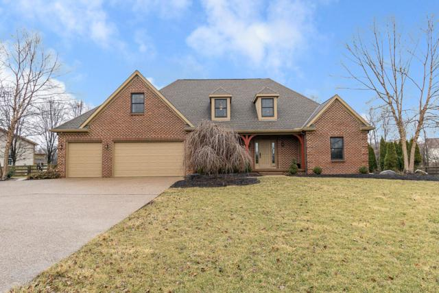 6705 Plumb Road, Galena, OH 43021 (MLS #219011777) :: The Clark Group @ ERA Real Solutions Realty