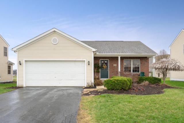 391 Triple Crown Way, Marysville, OH 43040 (MLS #219011784) :: Signature Real Estate