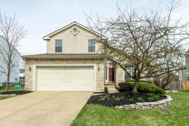 1639 Royal Oak Drive, Lewis Center, OH 43035 (MLS #219011789) :: Keller Williams Excel