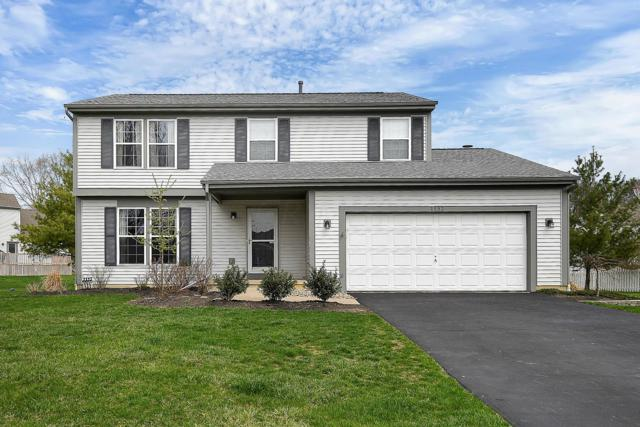 1193 Briarshore Way, Lewis Center, OH 43035 (MLS #219011820) :: ERA Real Solutions Realty