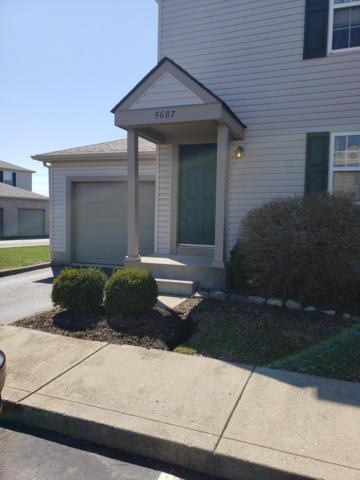 5687 Ashcroft Lane 163A, Hilliard, OH 43026 (MLS #219011986) :: RE/MAX ONE