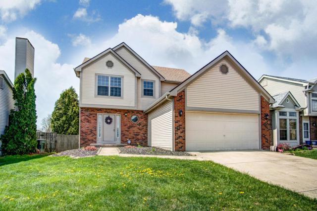 1879 Seasprite Drive, Galloway, OH 43119 (MLS #219012085) :: Signature Real Estate