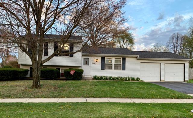 1114 Addison Drive, Reynoldsburg, OH 43068 (MLS #219012164) :: ERA Real Solutions Realty