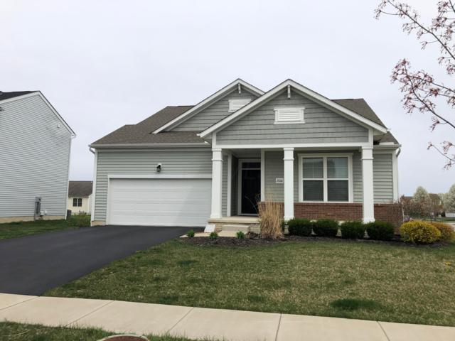 2006 Derby Drive, Marysville, OH 43040 (MLS #219012200) :: Signature Real Estate
