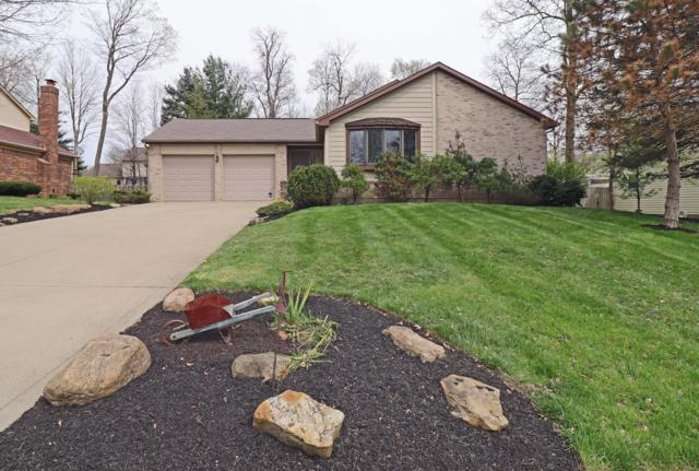 508 Howland Drive, Gahanna, OH 43230 (MLS #219012438) :: Signature Real Estate