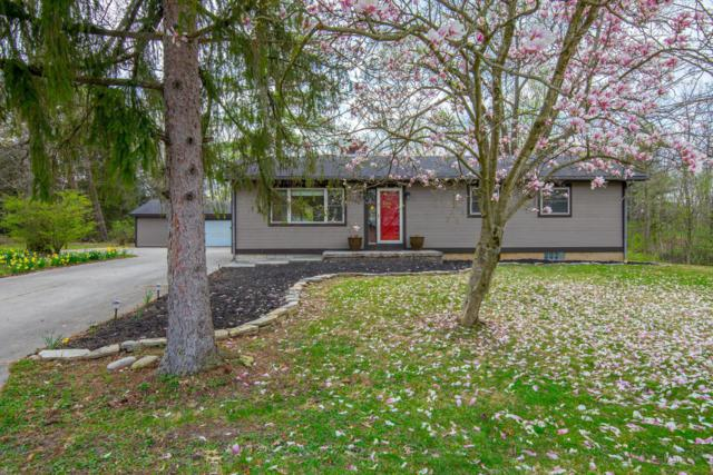 6250 Home Road, Delaware, OH 43015 (MLS #219012452) :: Signature Real Estate