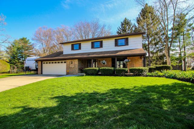 39 Lynette Place N, Westerville, OH 43081 (MLS #219012472) :: Signature Real Estate