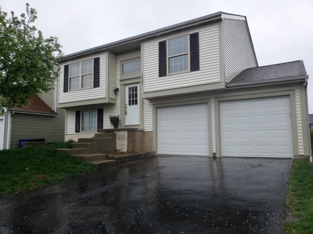 1295 Treehaven Lane, Columbus, OH 43204 (MLS #219012588) :: Signature Real Estate