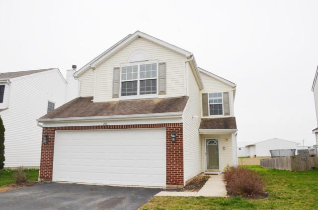 221 Scott Farms Boulevard, Marysville, OH 43040 (MLS #219012701) :: The Clark Group @ ERA Real Solutions Realty