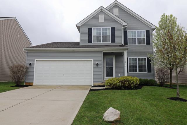8337 Olympus Lane, Blacklick, OH 43004 (MLS #219012707) :: Julie & Company
