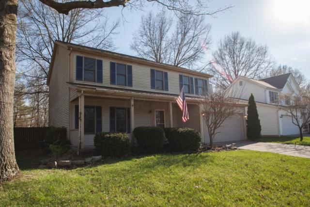 303 Rutherford Avenue, Delaware, OH 43015 (MLS #219012758) :: Julie & Company