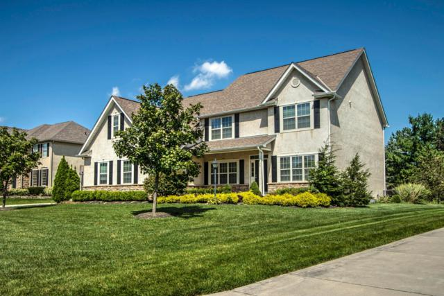 7735 Early Meadow Road, Westerville, OH 43082 (MLS #219012773) :: Signature Real Estate