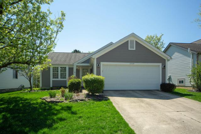 3529 Aaron Drive, Columbus, OH 43228 (MLS #219012821) :: RE/MAX ONE