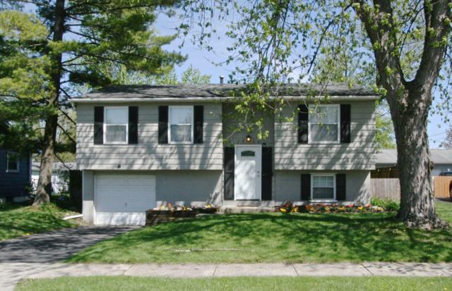 5910 Cairo Road, Westerville, OH 43081 (MLS #219012855) :: Brenner Property Group | Keller Williams Capital Partners