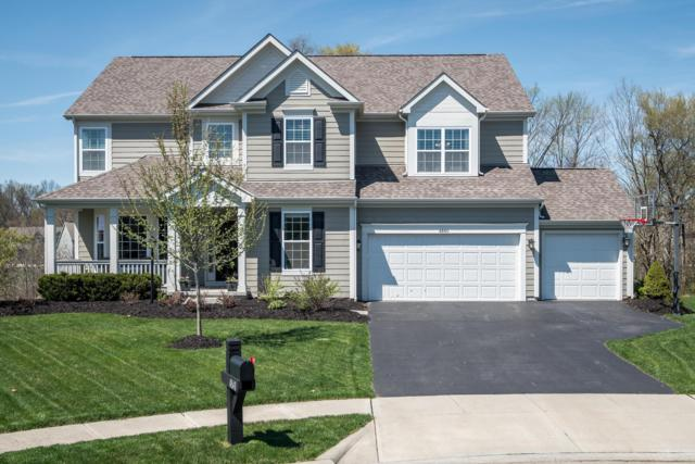 4840 Braiden Drive, Galena, OH 43021 (MLS #219013092) :: The Clark Group @ ERA Real Solutions Realty