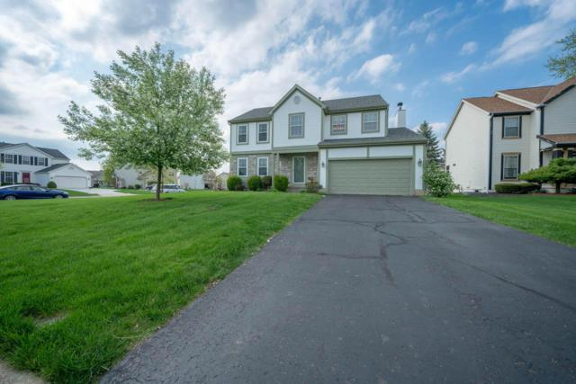 7896 Gladshire Boulevard, Lewis Center, OH 43035 (MLS #219013106) :: The Clark Group @ ERA Real Solutions Realty