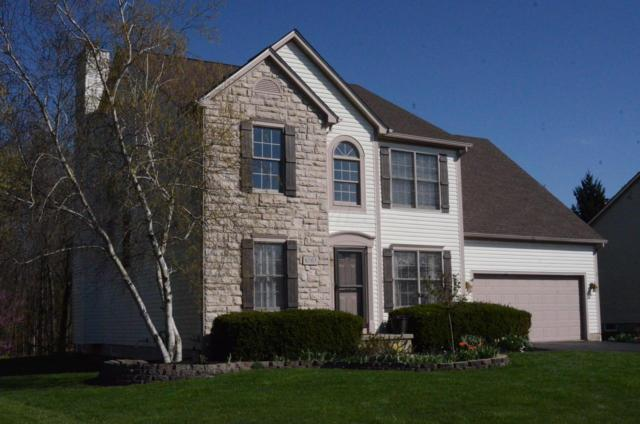 8263 Coldharbor Boulevard, Lewis Center, OH 43035 (MLS #219013112) :: The Clark Group @ ERA Real Solutions Realty
