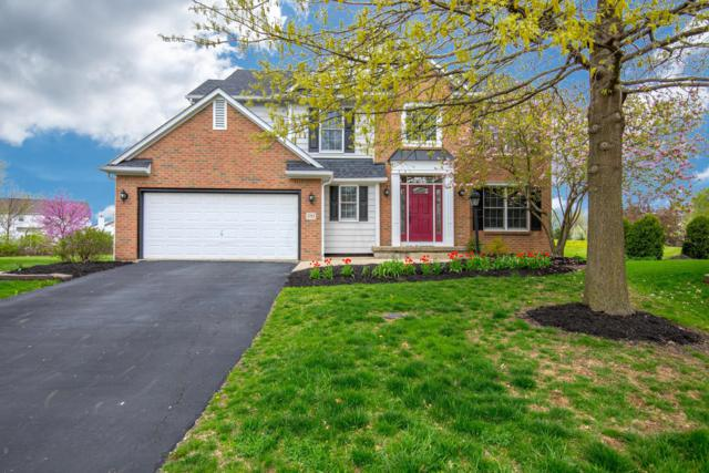 1753 Whites Court, Lewis Center, OH 43035 (MLS #219013138) :: Berkshire Hathaway HomeServices Crager Tobin Real Estate