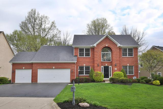 7291 Wallpepper Court, Westerville, OH 43082 (MLS #219013160) :: Signature Real Estate