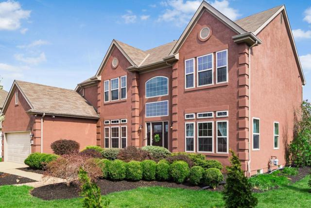 4158 E Bay Circle, Lewis Center, OH 43035 (MLS #219013189) :: Brenner Property Group | Keller Williams Capital Partners
