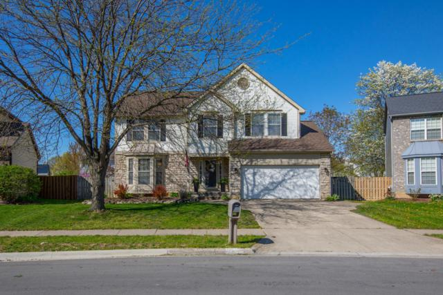 2390 Oakthorpe Drive, Hilliard, OH 43026 (MLS #219013230) :: The Clark Group @ ERA Real Solutions Realty