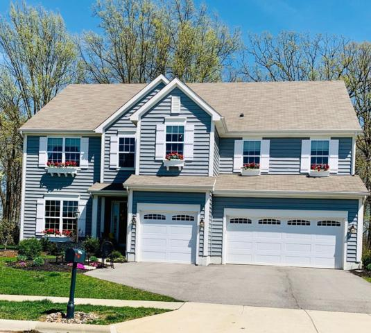6605 Kellogg Drive, Powell, OH 43065 (MLS #219013240) :: The Clark Group @ ERA Real Solutions Realty
