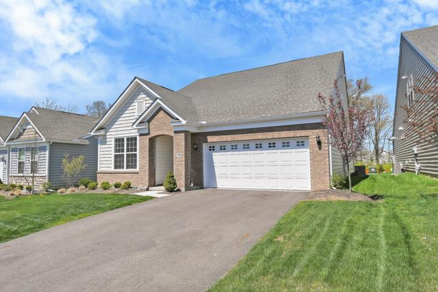 5702 Knob Creek Drive #3, Westerville, OH 43081 (MLS #219013308) :: The Clark Group @ ERA Real Solutions Realty