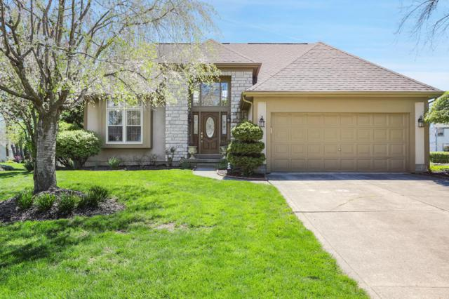 4708 Clayburn Drive E, Grove City, OH 43123 (MLS #219013315) :: The Clark Group @ ERA Real Solutions Realty