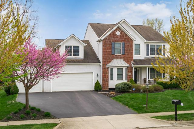9008 Francine Lane, Powell, OH 43065 (MLS #219013368) :: The Clark Group @ ERA Real Solutions Realty